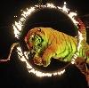 Цирки в Буланаше